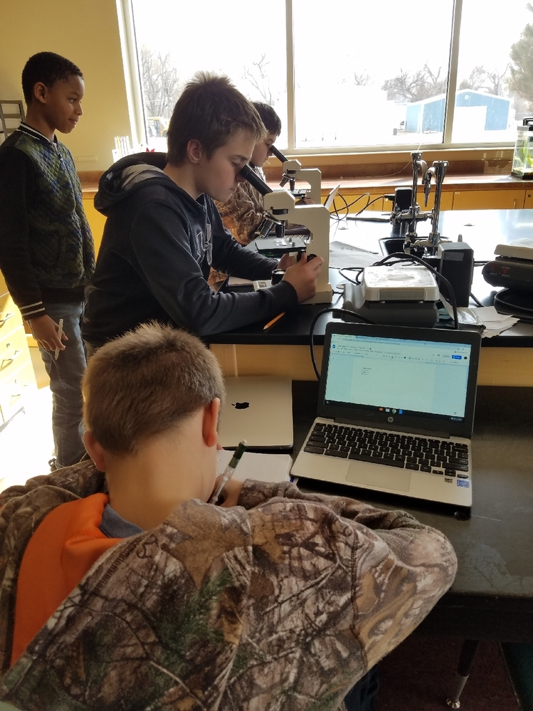 7th grade science cell/tissue/organism lab