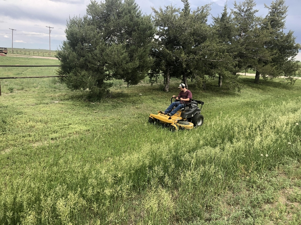 Student mowing grass.